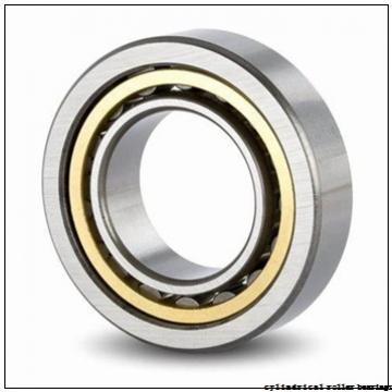 40 mm x 80 mm x 18 mm  NACHI NJ 208 cylindrical roller bearings