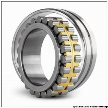 40 mm x 55 mm x 40 mm  ISO RNAO40x55x40 cylindrical roller bearings