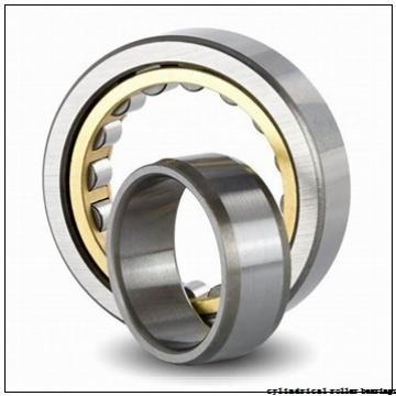 17 mm x 40 mm x 16 mm  ISO NUP2203 cylindrical roller bearings
