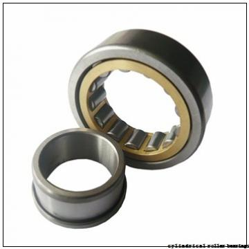 75 mm x 130 mm x 25 mm  NACHI NP 215 cylindrical roller bearings