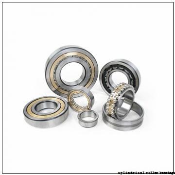 SKF RNAO 60x78x20 cylindrical roller bearings