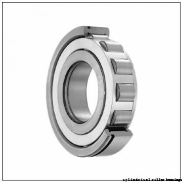 100 mm x 250 mm x 58 mm  KOYO NU420 cylindrical roller bearings